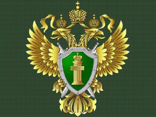 http://mygorod48.ru/upload/main/0ef/0ef2d7e41ff3ad4b78064140c606b530.jpg
